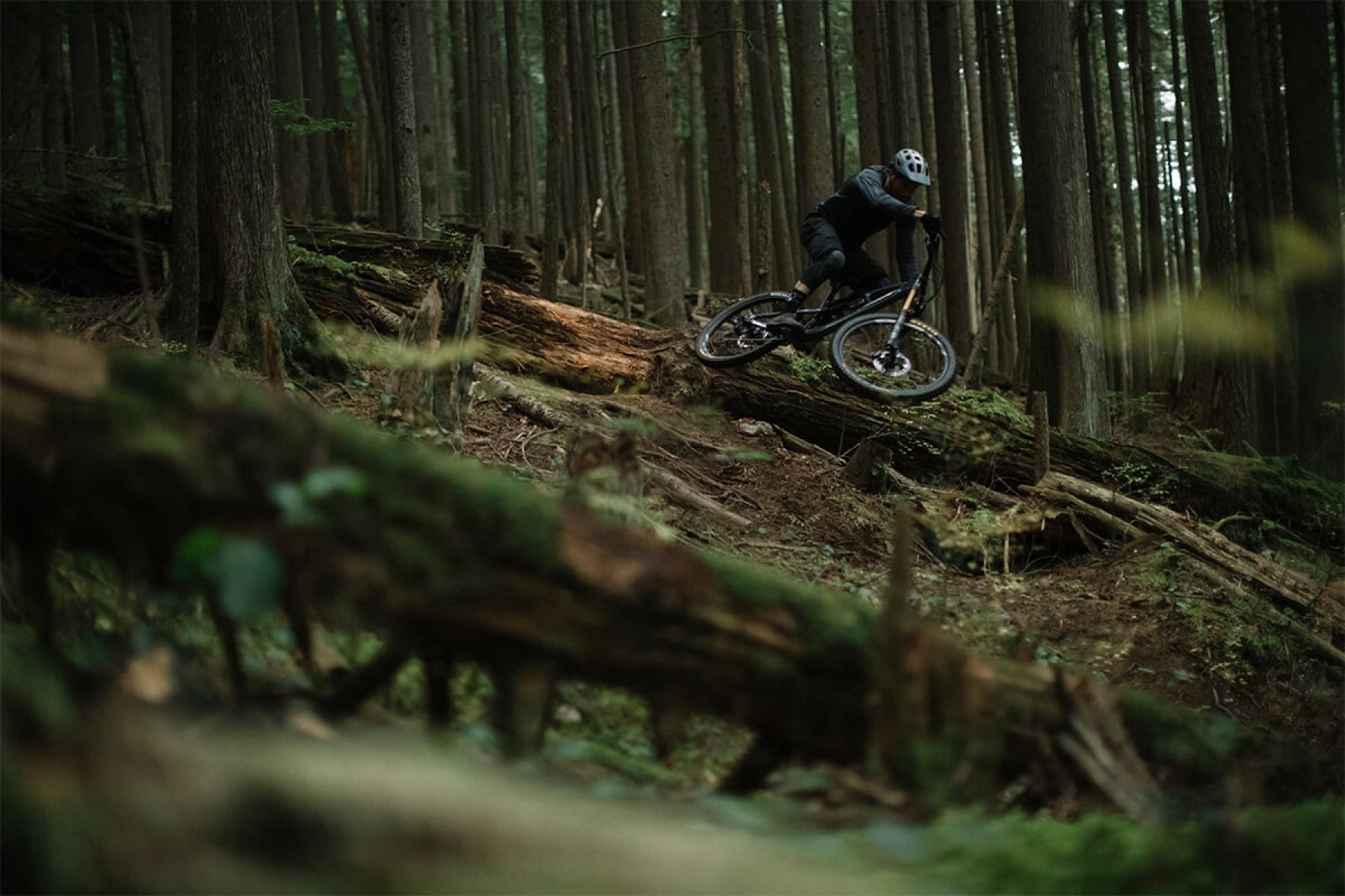 Thomas Vanderham Mountain biker